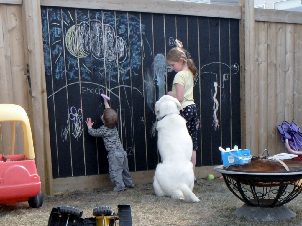 The Chalkboard Fence