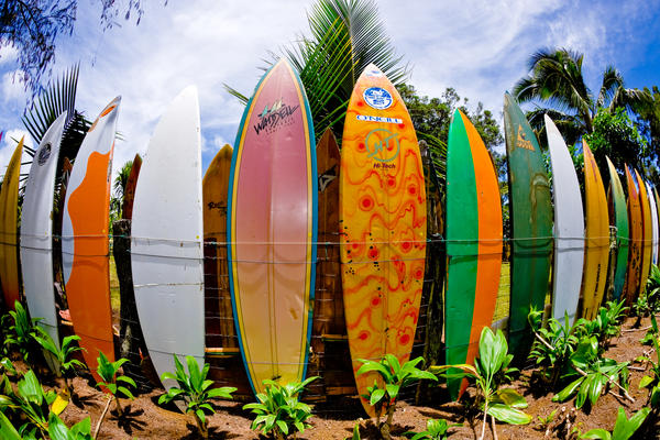 The Surfboard Fence