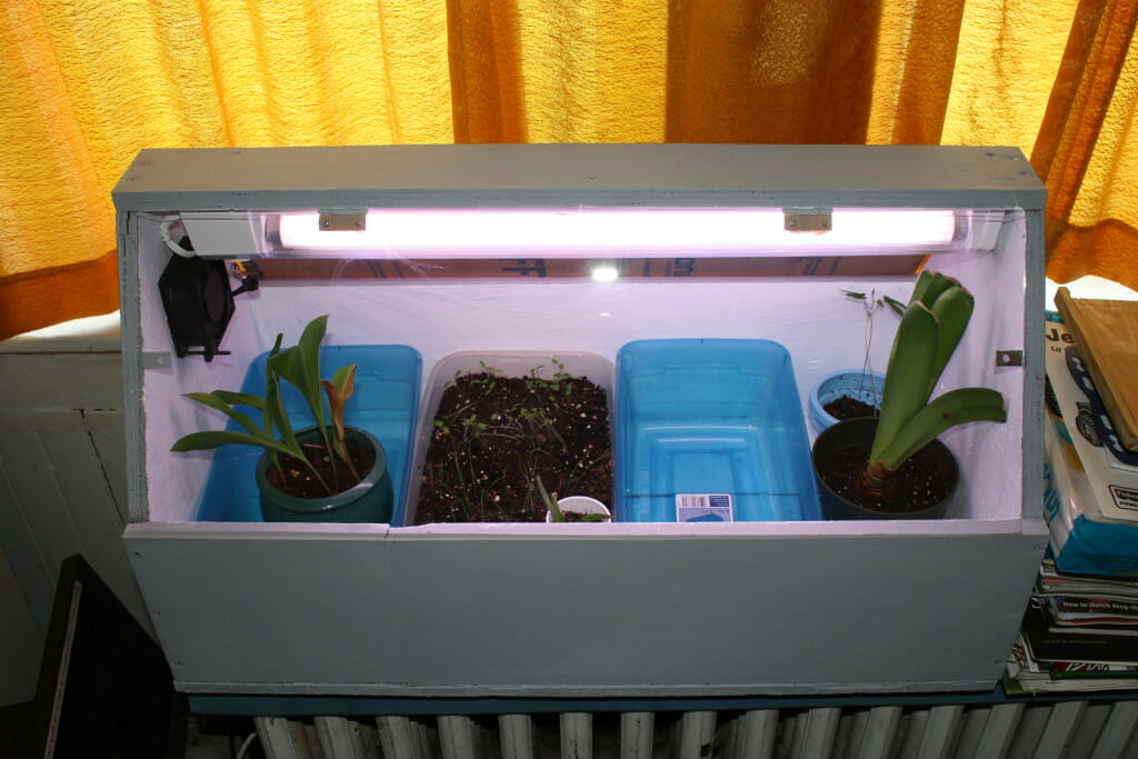 A simple and cheap grow box for finicky plants
