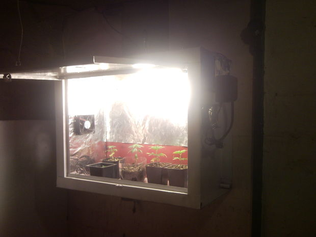 12 Diy Homemade Grow Boxes To Control The Growing Environment Home And Gardening Ideas Home