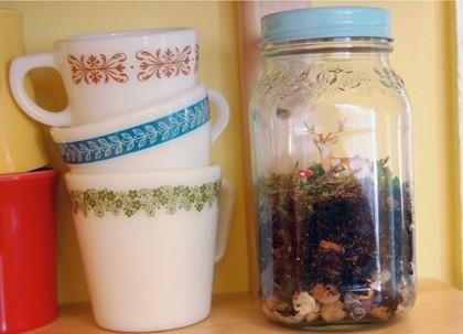 DIY Jar Terrarium