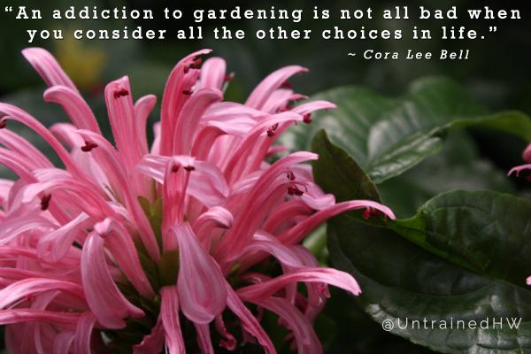 Cora Lee Bell garden quote