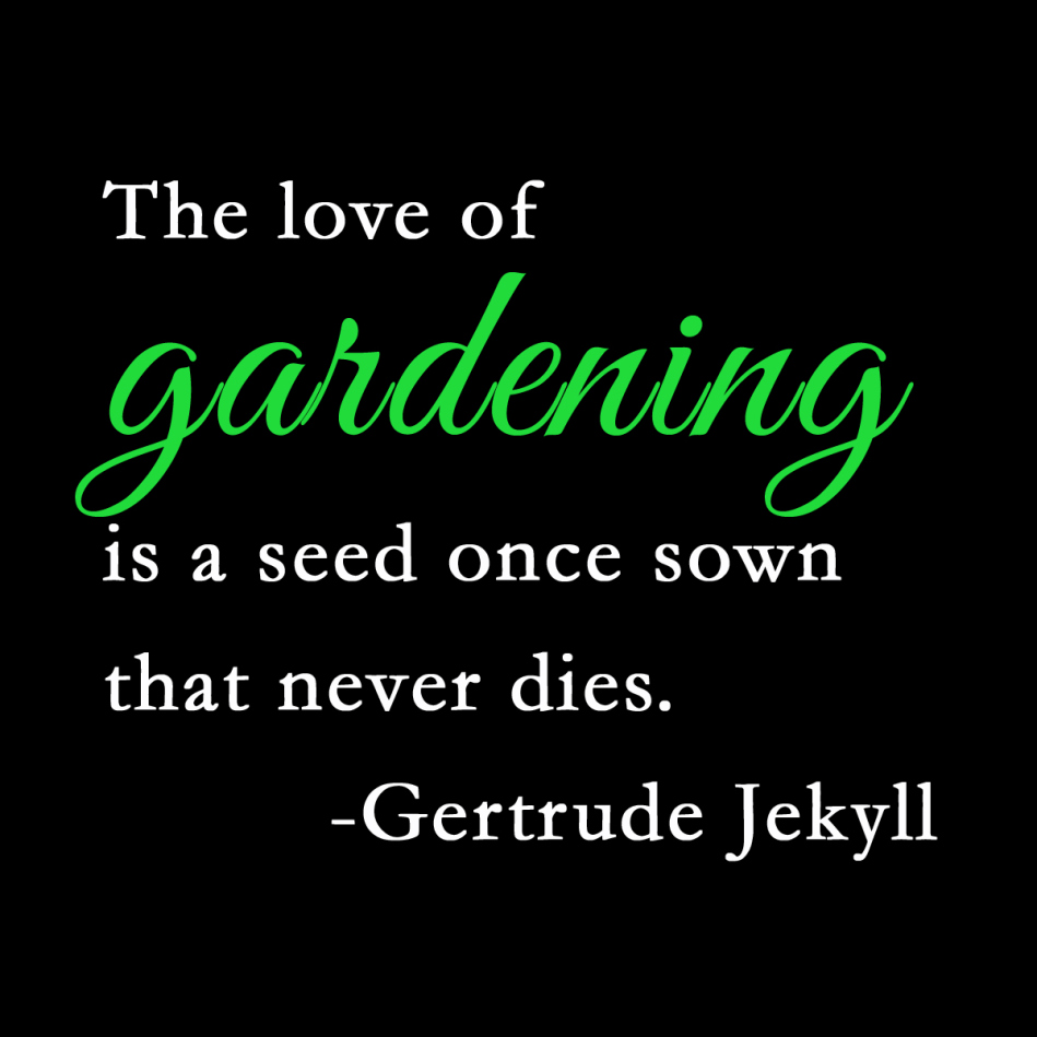inspiring gardening quotes and sayings by famous authors home gertrude jekyll quote