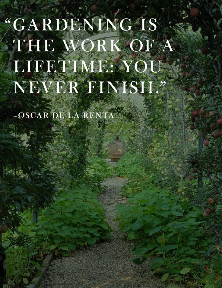 Oscar De La Renta saying