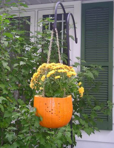 Pumpkin Planter