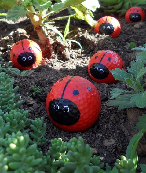 Golf Ball Lady Bugs