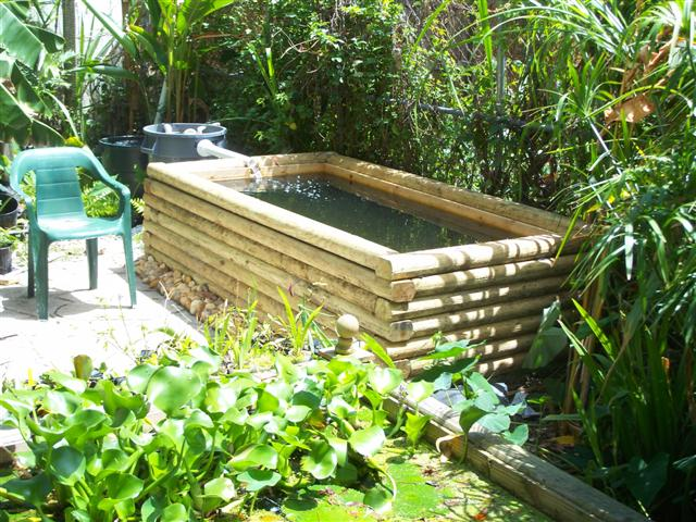 how to build a fish pond in your garden
