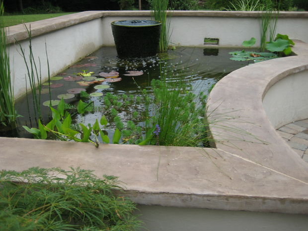 7 ideas for building a koi fish and backyard pond home for Concrete koi pond design