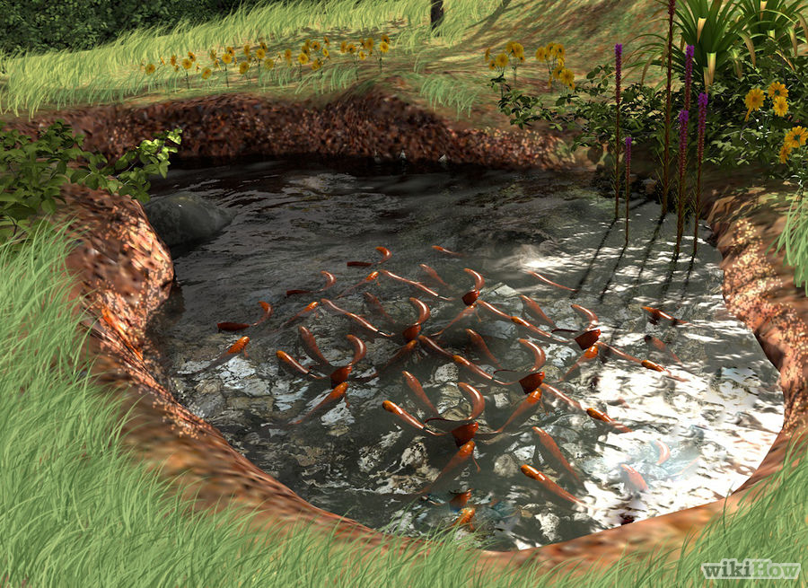 7 ideas for building a koi fish and backyard pond home for Making a garden pond and waterfall