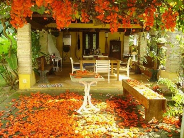 Fall patio Decor