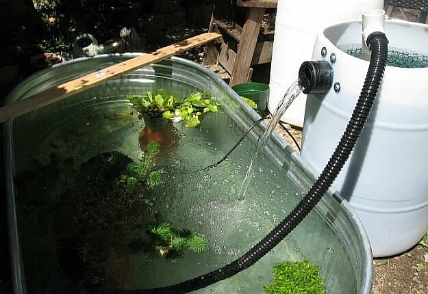 10 diy pond filter inexpensive and easy to build home for Water filtering plants for ponds