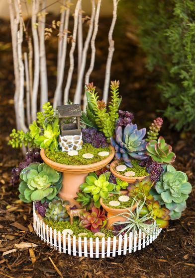 Fairy Garden in a Garden