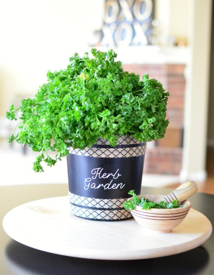 garden pot idea