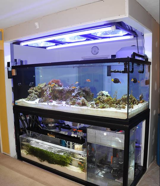 25+ DIY Aquarium Stands For Various Sizes Of Fish Tanks – Home And