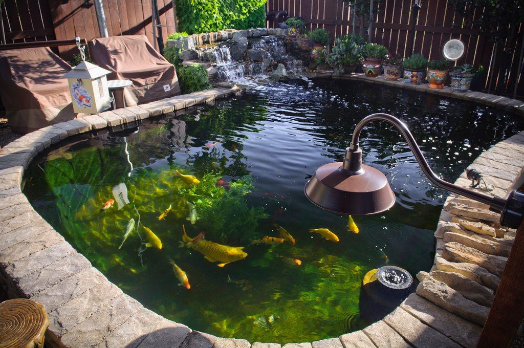 17 Cool DIY Koi Pond Ideas For Your Backyard - Home And ... on Koi Ponds Ideas id=76029